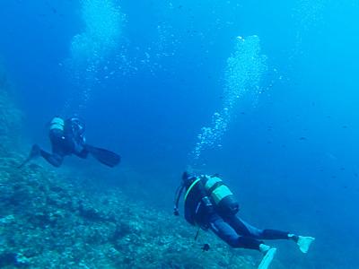 スキューバダイビング/Scuba Diving