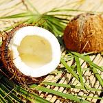 ココナッツ(ココナツ)のイメージ画像